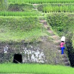Die Umgebung um Ubud