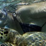 Noch mehr Fotos aus dem Riff von Gili Air
