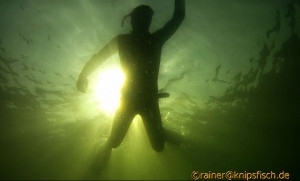 FREEDIVE BERLIN - Impressions of Freshwater Freediving at Sacrower See - near Berlin